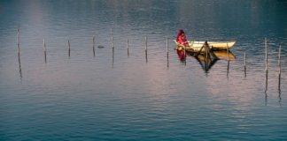 Fisheries Law Compliance Audit